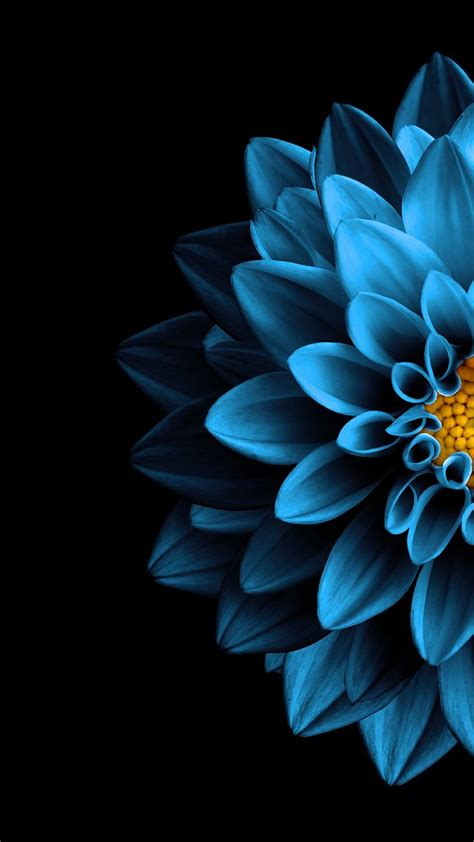 Flower Iphone Black Background Wallpaper by Iphone Wallpaper Wall Wallpaper Black