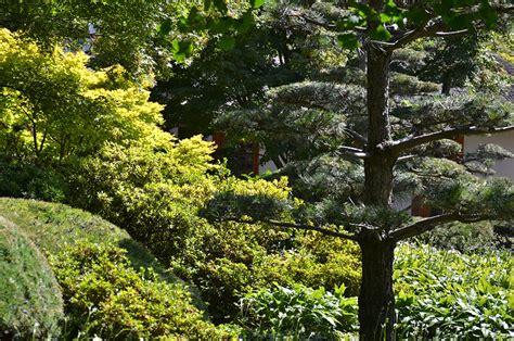 Japanischer Garten Chemnitz by 187 Hamburg Planten Un Blomen Juli 2013