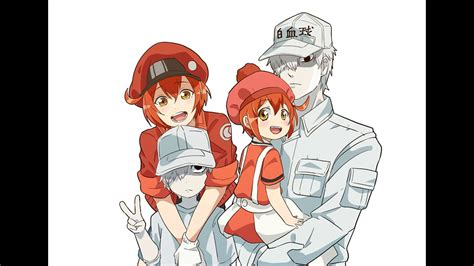 wallpapers hd hataraku saibou red blood cell anime top