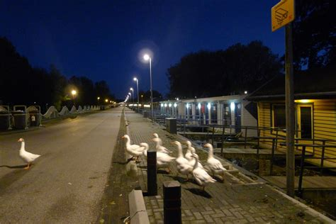 Woonboot Te Koop Kanaalweg Utrecht by Utrecht Krijgt Meer Ruimte Voor Woonboten Nieuws030