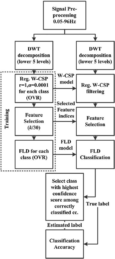 Clas Lifier Block Diagram by The Block Diagram For The Signal Processing Algorithm Used