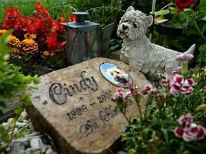 Hund Im Garten Vergraben : tiere bestatten rechte und pflichten f r halter ~ Lizthompson.info Haus und Dekorationen