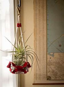 39Suede Rope39 Hanging Plant Holder SFGate