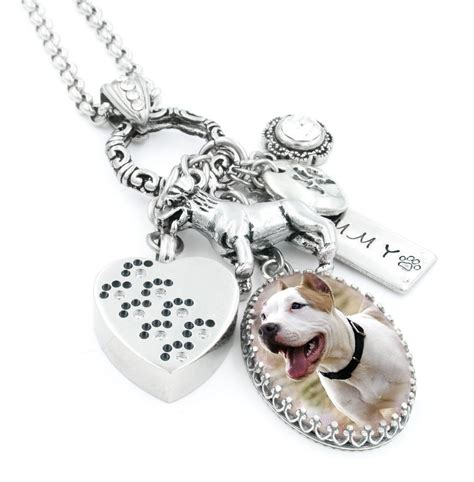 Pet Cremation Urn Necklace Memorial for Pet Loss of Pet