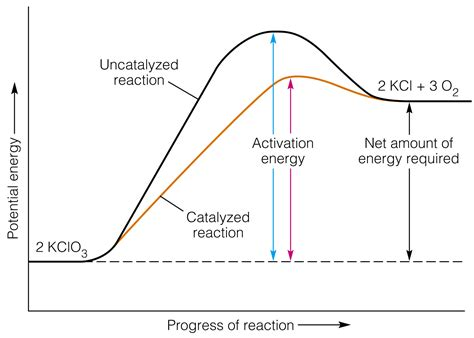 Potential Energy Diagram Labeled  Bing Images