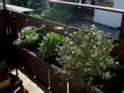 Dauerbepflanzung Für Balkonkästen : winterharte balkonpflanzen ~ Frokenaadalensverden.com Haus und Dekorationen