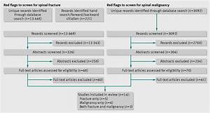 Red Flags To Screen For Malignancy And Fracture In Patients With Low Back Pain  Systematic