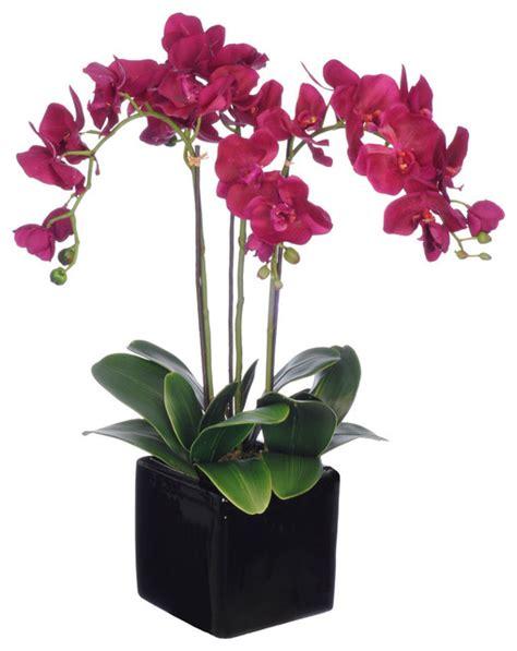 artificial dark purple triple stem phalaenopsis orchid in