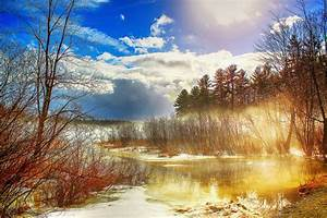 Wallpaper, Sunlight, Trees, Landscape, Forest, Lake, Water, Nature, Reflection, Sky, Snow