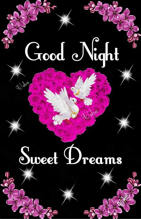 good night sweet dreams good night sweet dreams