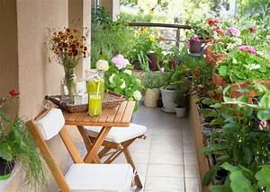 Starting A Terrace Garden Or Balcony Garden Old Farmer