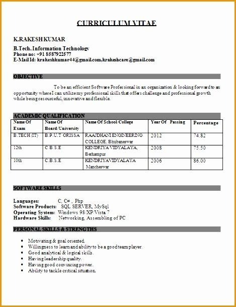 Curricular Activities In Resume For Freshers by 8 Resume Template For Fresher Free Sles Exles Format Resume Curruculum Vitae