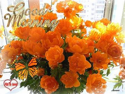 Flowers Birthday Amazing Happy Orange Roses Butterfly