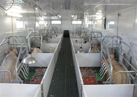 Farrowing Portable Piggy Cabin   Jetwash International Ltd