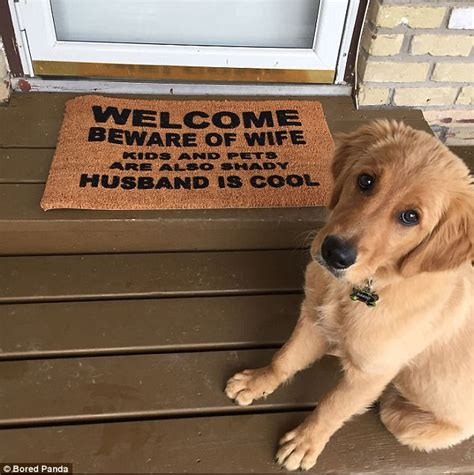 cool doormats uk hilarious doormats revealed in gallery daily mail