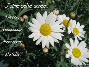 Carte De Voeux à Imprimer Gratuite : 16 images gratuites pour vos cartes de voeux nouvel an ~ Nature-et-papiers.com Idées de Décoration