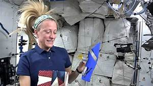 NASA Astronaut Karen Nyberg Invites Quilters to Create a ...