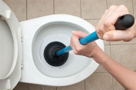toilette verstopft was tun der ratgeber rund um die hausmeisterei
