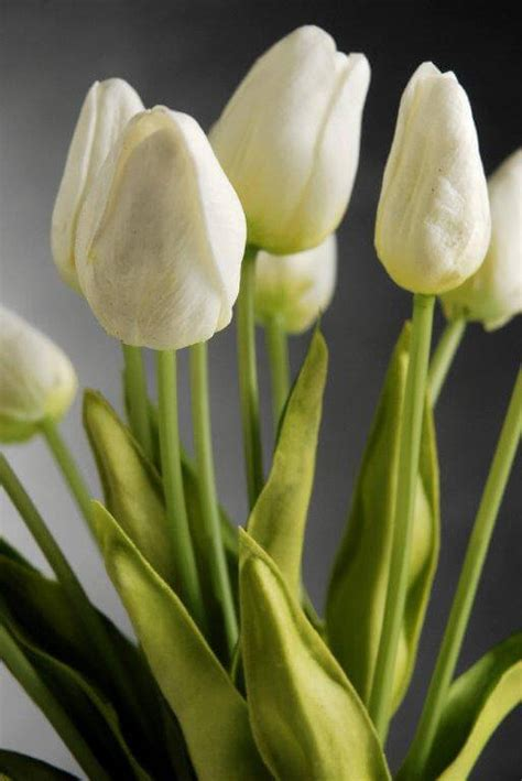 natural touch mini white tulip bouquet