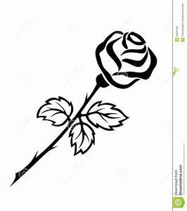 hoontoidly: Single Black Rose Drawings Images
