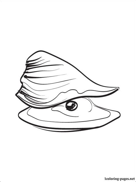 oyster printable  coloring page coloring pages