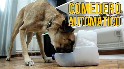 como hacer  comedero automatico  perros