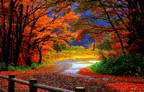 fall computer backgrounds autumn wallpaper hd widescreen mega wallpapers