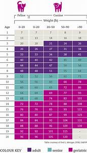 Dog Breed Exercise Chart Cat Dog Age Calculator What 39 S The Real Age Of Your Pet