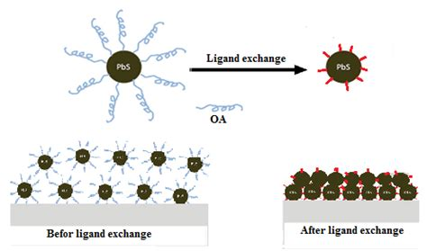1 Schematic of ligand exchange of organic capping ligands ...