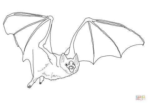 Vampire Bat Coloring Page