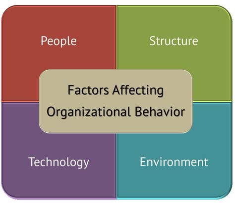 organizational behavior forces affecting key types affect four describe employees help complex study today definition case