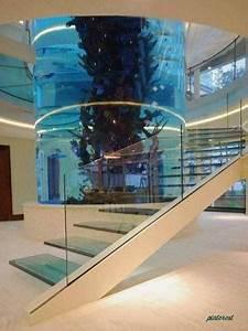 12 Aquariums Incroyables  U00e0 Avoir Chez Soi  U2013 Astuces De Filles