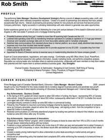resume for director level position executive level resume sle
