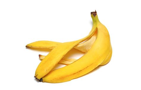 Eat In Kitchen Ideas - here s how to purify water with banana peels