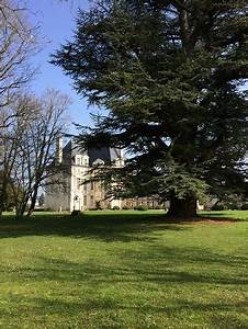 Selles Sur Cher : chateau de selles sur cher 2018 all you need to know before you go with photos tripadvisor ~ Medecine-chirurgie-esthetiques.com Avis de Voitures