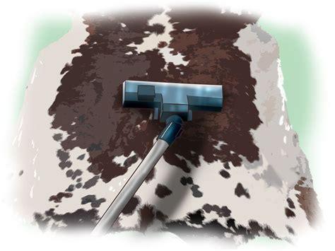 Cowhide Rug Maintenance by Best 25 Cowhide Rug Decor Ideas On Cowhide