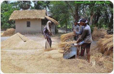 gramin natural wallpaper  bangladesh village people