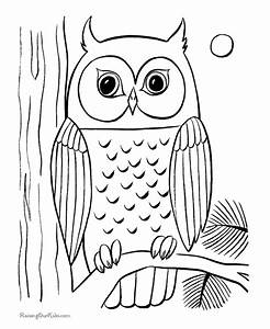 Nocturnal Bird Owl coloring pages 34 pictures cartoon clip ...