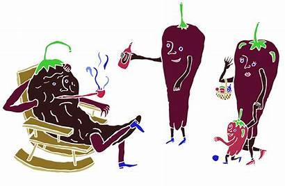 Stuff Animated Mexico Chiles Guide Ancho Dried