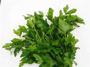 parsley-flat leaf-cutout | Recipes from Nash's Organic Produce