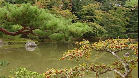 Japanischer Garten Nadelbaum by Japanischer Garten Kinkaku Ji Kyoto Japan