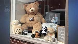 Teddy Bear Hund : nation wide teddy bear hunt why teddy bears have been ~ A.2002-acura-tl-radio.info Haus und Dekorationen
