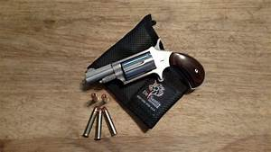 Naa  22 Mag Mini Revolver Penetration Test  Hornady