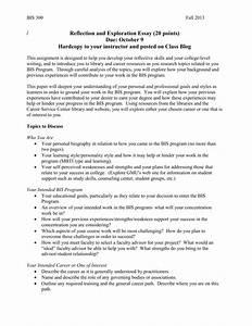 008 Essay Example Future Career Plan Sample 617907