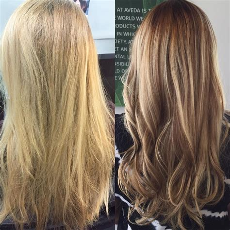 Before And After Blonde To Brunette Highlights And