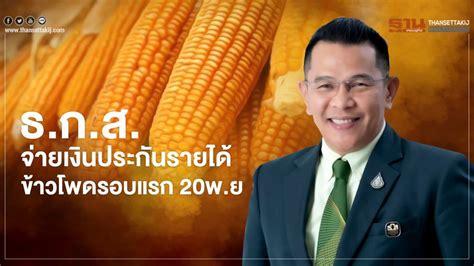ธ.ก.ส. เตรียมจ่ายเงินประกันรายได้แก่เกษตรกรผู้ปลูกข้าวโพด ...
