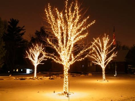 christmas light tree designs the best 40 outdoor lighting ideas that will leave you breathless