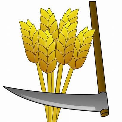 Harvest Clipart Scythe Cata Clip Reaper Dibujos
