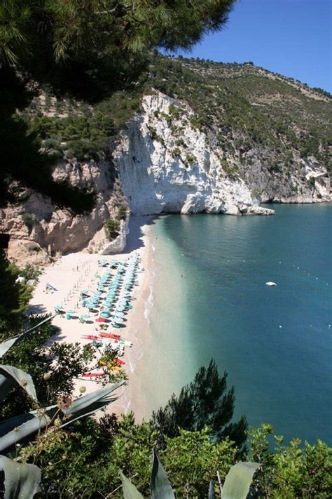 puglia beach  httpwwwbest italian winecombest