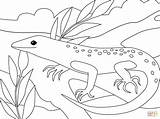 Coloring Lizard Pages Printable Paper Crafts sketch template